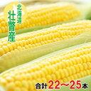 【ふるさと納税】<2021年8月初旬よりお届け>約10kg!北海道壮瞥産とうもろこし(恵味)Lサイズ25本 【野菜・とうもろこし】 お届け:2021年8月初旬〜8月末まで・・・