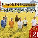 【ふるさと納税】北海道壮瞥産 ゆめぴりか 計20kg(10k