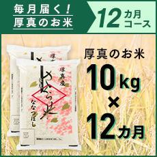 【ふるさと納税】1年間!毎月届く定期便「厚真のお米」10kg