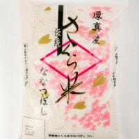 さくら米(ななつぼし)10kg