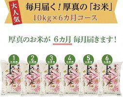 6か月!毎月届く定期便「厚真のお米」10kg