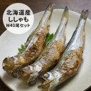 【ふるさと納税】北海道産ししゃもM40尾セット【魚貝類/ししゃも】