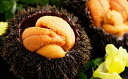 【ふるさと納税】北海道日高産塩水うに80g×2パック【魚貝類/ウニ】お届け:2019年6月上旬〜6月末日まで