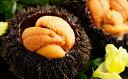 【ふるさと納税】北海道日高産塩水うに80g×3パック【魚貝類/ウニ】お届け:2019年6月上旬〜6月末日まで