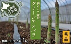 【ふるさと納税】2L【秀品】約1kgグリーンアスパラ<北海道日高門別産> 【野菜】 お届け:2021年4月上旬〜6月上旬まで 画像1