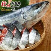 【ふるさと納税】北海道浦河前浜産特選新巻鮭(特大サイズ)丸ごと切身4.5kg前後[B02-775]