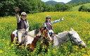 【ふるさと納税】乗馬体験90分×1名駈歩(かけあし)コース[...