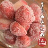 【ふるさと納税】北海道浦河産冷凍いちご「やよいひめ」(800g×2P)[B13-876]