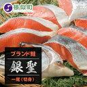 【ふるさと納税】【熟成】 ブランド鮭 「銀聖」 1尾(切身)