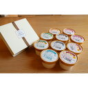≪ふるさと納税≫北海道産の生乳使用!濃厚アイスクリーム(120ml×10個)とカマンベールチーズケーキのセット[C1-1]