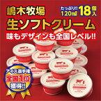 【ふるさと納税】A31-1 牧場の生ソフトクリーム