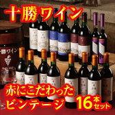 【ふるさと納税】D01-1 十勝ワインビンテージ16本セット