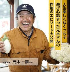 【ふるさと納税】とうもろこし2種セット合計10本 Lサイズ 元木農場 北海道浦幌町産 生でも食べられる糖度20度以上 朝もぎたてとうもろこし【9月上旬~中旬より順次配送】・・・ 画像1