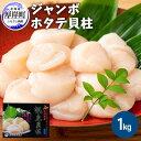 【ふるさと納税】ジャンボホタテ貝柱 1kg 【魚貝類・帆立】