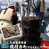 【ふるさと納税】【訳あり・規格外】 北海道厚岸産 殻付カキ(マルえもん)約4kg 1箱目安(25個〜50個) カキナイフ付き 【魚貝類・魚介類・生牡蠣・牡蠣・かき・カキ・シーフード・殻付き牡蠣】