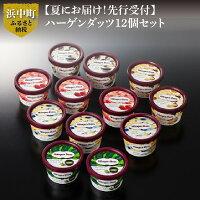 【ふるさと納税】【夏にお届け!】ハーゲンダッツ・アイスクリームセット12個