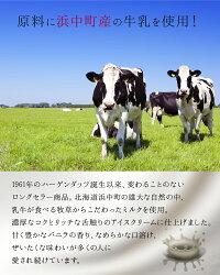 【ふるさと納税】ハーゲンダッツミニカップマルチセット