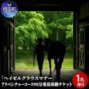【ふるさと納税】「ヘイゼルグラウスマナー」アドベンチャーコース90分乗馬体験チケット(1名様分) 【体験チケット・地域のお礼の品・カタログ】