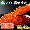 【ふるさと納税】146.いくら醤油 80g×10個 北海道産...