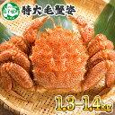 【ふるさと納税】 蟹 毛蟹 1.3-1.4kg前後 かに カ...