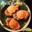 【ふるさと納税】 蟹 毛蟹 8-12尾 計4kg前後 北海道...