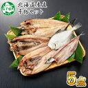 【ふるさと納税】 北海道産直 ふっくらやわらか 干物 5点セ...