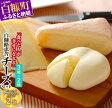 【ふるさと納税】白糠酪恵舎チーズセット
