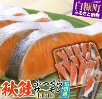 【ふるさと納税】秋鮭ふっくらサーモン【15切れ入り(1050g)】 ふるさと納税 北海道 応援