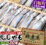【ふるさと納税】【緊急支援品】しらぬか産ししゃも【オスメス30尾】(15,000円) ふるさと納税 魚