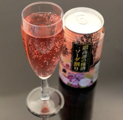 鍛高譚(たんたかたん)の梅酒ソーダ割り 24缶入