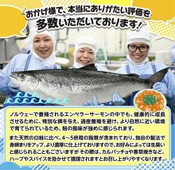 【ふるさと納税】エンペラーサーモン ふるさと納税 魚 【1kg】 画像1