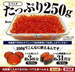 【ふるさと納税】いくら醤油漬(鱒卵)【500g(250g×2)】【北海道白糠町】- 画像1
