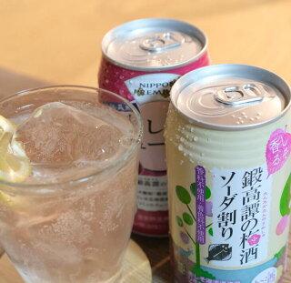 しそ焼酎 鍛高譚の梅酒ソーダ割と赤しそのチューハイ 飲み比べセット