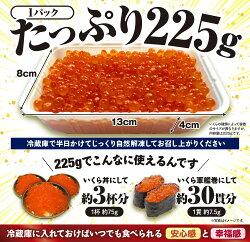 【ふるさと納税】※12月末までにお届け※いくら醤油漬(鮭卵)【450g(225g×2)】 画像1