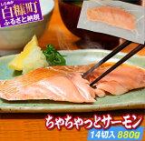 【ふるさと納税】ちゃちゃっとサーモン【14切入(880g)】 ふるさと納税 魚