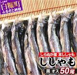 【ふるさと納税】【訳あり】しらぬか産ししゃも【黒オス50尾】(7,500円) ふるさと納税 魚