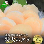 【ふるさと納税】北海道野付産大粒Lサイズ冷凍ほたて1kg!500g(約10~13玉入)×2袋入【1204759】