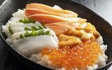 【ふるさと納税】知床らうす海鮮丼セット