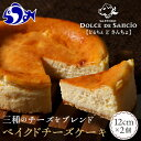 【ふるさと納税】ベイクドチーズケーキ 【羅臼】 F21M-4
