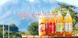 【ふるさと納税】JA相馬村のりんご 無添加りんごジュース詰め合わせ1L×6本【弘前市産・青森りんご】 【飲料類・果汁飲料・りんご・ジュース・アップルジュース・ふじ・王林・シナノゴールド】・・・ 画像2