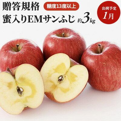 【ふるさと納税】1月 贈答用 蜜入りEMサンふじ約3kg 糖度13度以上【弘前市産・青森りんご】 【果物類・林檎・りんご・リンゴ】 お届け:2021年1月6日~2021年1月31日