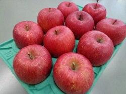 【ふるさと納税】1月 贈答用 蜜入りEMサンふじ約3kg 糖度13度以上【弘前市産・青森りんご】 【果物類・林檎・りんご・リンゴ】 お届け:2021年1月6日〜2021年1月31日・・・ 画像2