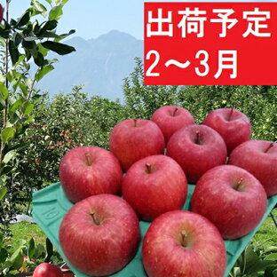 【ふるさと納税】2〜3月 贈答用 EMサンふじ約3kg 糖度13度以上【弘前市産・青森りんご】 【果物類・林檎・りんご・リンゴ】 お届け:2021年2月1日〜2021年3月31日の画像