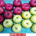 【ふるさと納税】1〜4月 【訳あり】 百年木の香 三上農園 家庭用サンふじ&王林約5kg 有機肥料100%【弘前市産・青森りんご】 【果物類・林檎・りんご・リンゴ】 お届け:2021年1月6日〜2021年4月10日