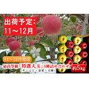 【ふるさと納税】11〜12月発送 最高等級「特選大玉」3種詰め合わせ約5kg(サンふじ・金星・王林)糖度13度以上【弘前市産・青森りんご】 【果物類・林檎・りんご・リンゴ】 お届け:2021年11月15日〜2021年12月30日