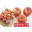 【ふるさと納税】2月 美味!家庭用葉とらずサンふじ約5kg【弘前市産・青森りんご】 【果物類・林檎・りんご・リンゴ】 お届け:2021年2月1日〜2021年2月28日