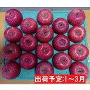 【ふるさと納税】年明け 【訳あり】家庭用 百年木の香 有機肥料100%サンふじ約5kg 【果物類・林檎・りんご・リンゴ】 お届け:2021年1月6日〜2021年3月31日
