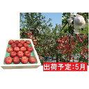 【ふるさと納税】5月 EM葉取らずふじ約5kg(有袋栽培・CA貯蔵)【弘前市産・青森りんご】 【果物類・林檎・りんご・リンゴ】 お届け:2021年5月10日〜2021年5月31日