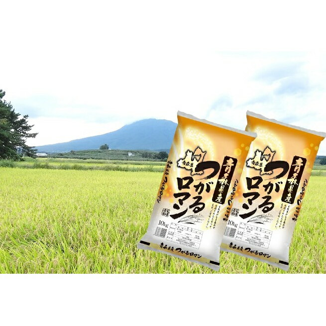 【ふるさと納税】令和2年度産 青森県産 一等米・つがるロマン20kg(精米・10kg×2袋) 【お米・つがるロマン】