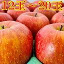 【ふるさと納税】8〜11月【家庭用】季節のりんご・採れたて!5kg【弘前市産・青森りんご】 【果物類・林檎・りんご・リンゴ・5kg】 お届け:2021年8月20日〜11月15日